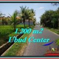 Magnificent 1,200 m2 LAND FOR SALE IN Sentral Ubud TJUB525