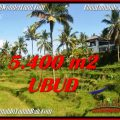 Exotic PROPERTY LAND FOR SALE IN UBUD BALI TJUB550