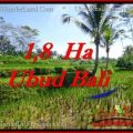 Magnificent PROPERTY LAND SALE IN UBUD TJUB553