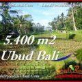 FOR SALE Affordable 5,400 m2 LAND IN UBUD TJUB554