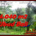 Magnificent 4,040 m2 LAND IN UBUD BALI FOR SALE TJUB555