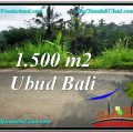 FOR SALE 1,500 m2 LAND IN UBUD TJUB556