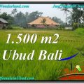 Exotic 1,500 m2 LAND IN UBUD BALI FOR SALE TJUB558