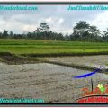Affordable 1,500 m2 LAND IN UBUD FOR SALE TJUB558