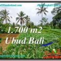 Magnificent PROPERTY 1,700 m2 LAND IN UBUD BALI FOR SALE TJUB560