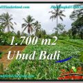 Beautiful 1,700 m2 LAND SALE IN UBUD BALI TJUB560