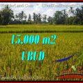 Beautiful PROPERTY 15,000 m2 LAND IN Ubud Tegalalang BALI FOR SALE TJUB551
