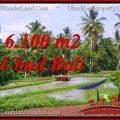 FOR SALE Affordable PROPERTY LAND IN UBUD TJUB552