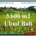 FOR SALE Exotic LAND IN Sentral Ubud BALI TJUB566