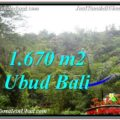 Exotic LAND IN UBUD FOR SALE TJUB569