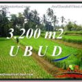 FOR SALE Magnificent PROPERTY 3,200 m2 LAND IN UBUD BALI TJUB594