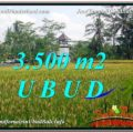 Beautiful PROPERTY 3,500 m2 LAND FOR SALE IN Ubud Tegalalang TJUB596
