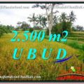 FOR SALE Beautiful PROPERTY LAND IN UBUD TJUB577