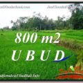 Affordable 800 m2 LAND IN UBUD BALI FOR SALE TJUB581