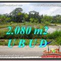 Exotic PROPERTY UBUD LAND FOR SALE TJUB582