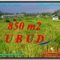 Magnificent 850 m2 LAND FOR SALE IN Ubud Pejeng TJUB583