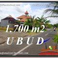 FOR SALE Affordable PROPERTY 1,700 m2 LAND IN UBUD BALI TJUB588