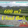 Exotic PROPERTY 600 m2 LAND FOR SALE IN Ubud Tegalalang TJUB607