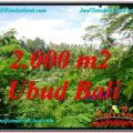 FOR SALE Beautiful PROPERTY 2,000 m2 LAND IN Ubud Tegalalang TJUB611