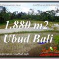 FOR SALE LAND IN Ubud Tegalalang BALI TJUB613