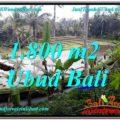 Magnificent UBUD BALI 1,800 m2 LAND FOR SALE TJUB616