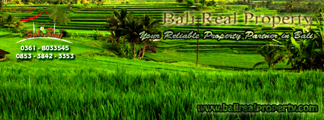 Land for sale in Bali - Land for sale in Ubud Bali