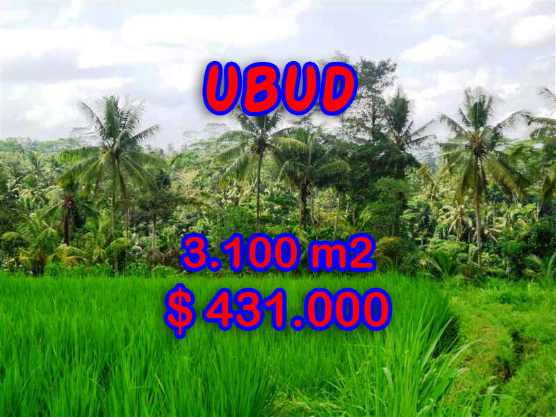 Land-for-sale-in-Ubud-