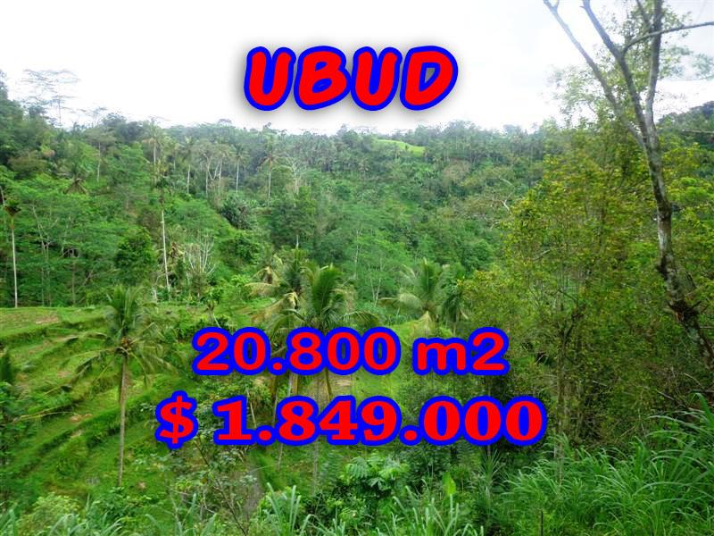 Land-for-sale-in-Ubud-land