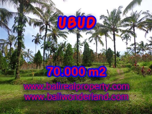 Land for sale in Ubud Bali, Great view in Ubud Payangan – TJUB358