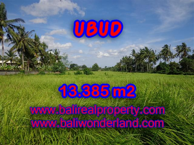 Exotic Land for sale in Ubud Bali, Rice paddy view in Central Ubud – TJUB357