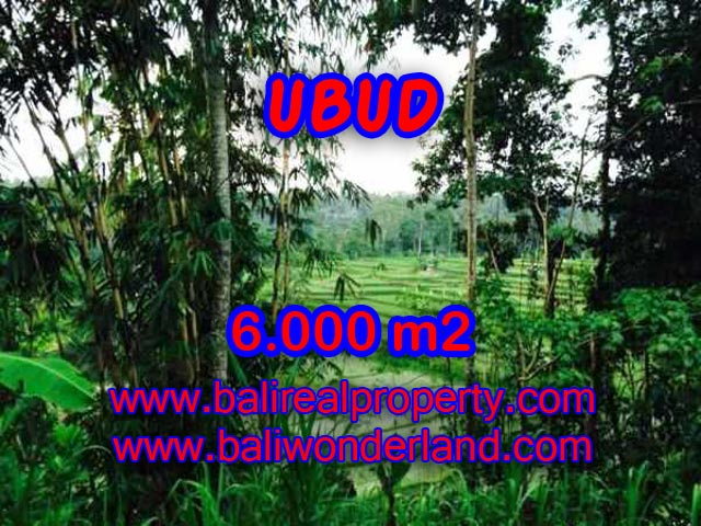 Land for sale in Ubud Bali, Astounding view in Ubud Center – TJUB349