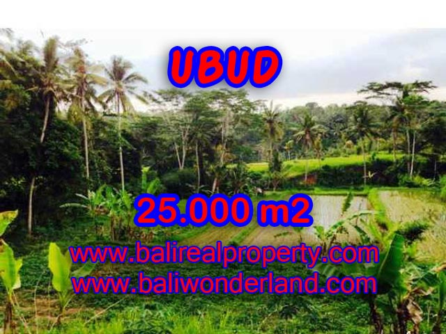 Land in Ubud Bali for sale, Exotic view in Central Ubud – TJUB350