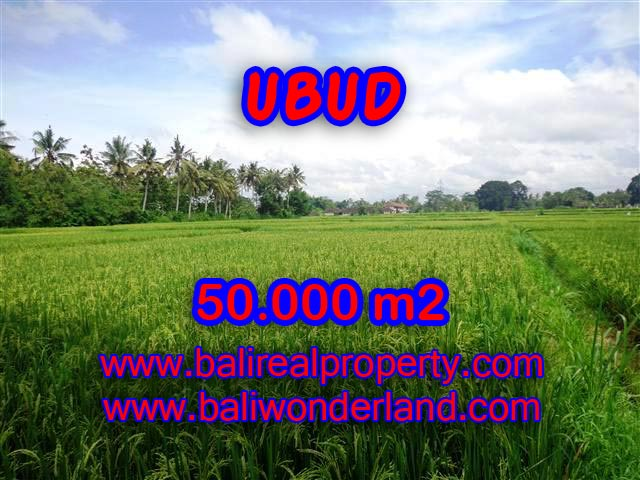 Land in Ubud for sale, Attractive view in Central Ubud Bali – TJUB351
