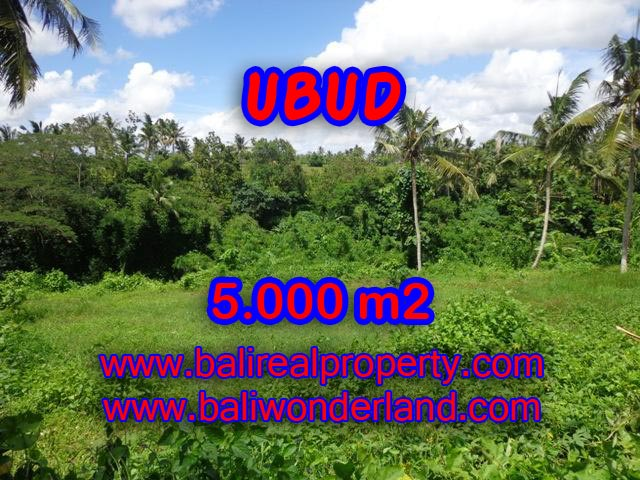 Land for sale in Ubud Bali, Magnificent view in Central Ubud – TJUB353