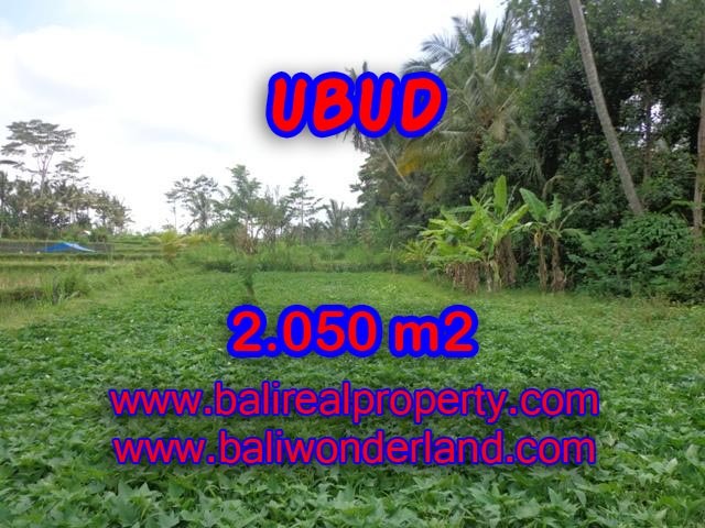 Land for sale in Ubud, Magnificent view in Ubud Pejeng Bali – TJUB344