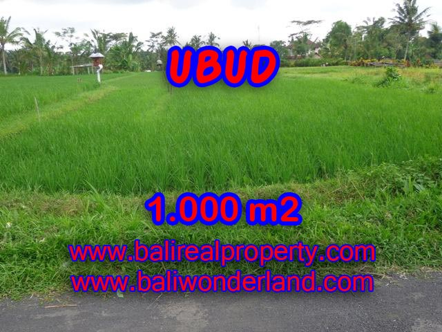 Land in Ubud Bali for sale, Outstanding view in Ubud Tampak siring – TJUB345
