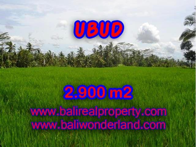 Land in Ubud for sale, Amazing view in Ubud Payangan Bali – TJUB356