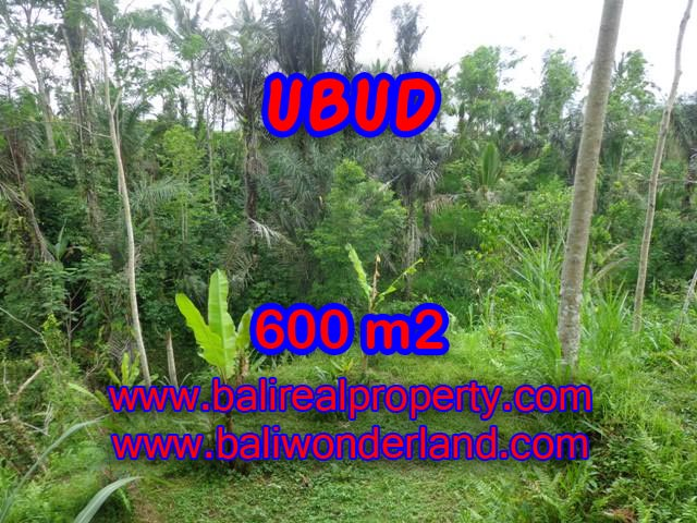 Land in Ubud for sale, Outstanding view in Ubud Tegalalang Bali – TJUB346
