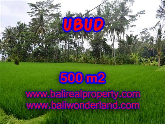Exotic Property for sale in Bali, LAND FOR SALE IN UBUD Bali – TJUB364