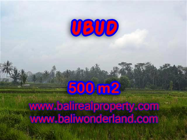 Land for sale in Ubud Bali, Wonderful view in Ubud Pejeng – TJUB363