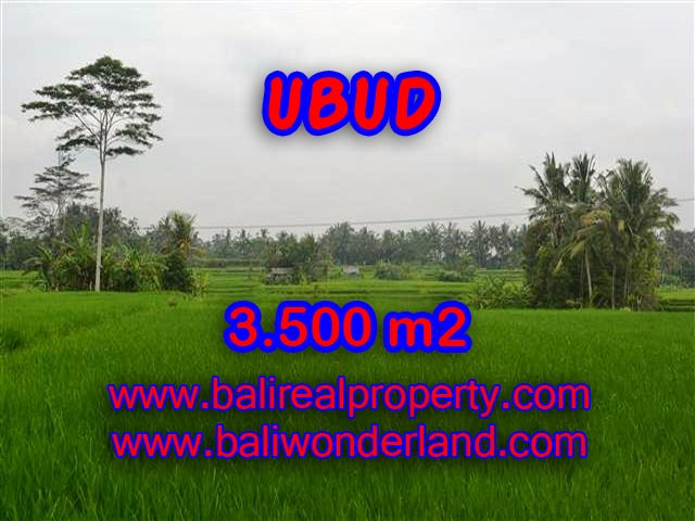 Land in Ubud for sale, Stunning view in Ubud Pejeng Bali – TJUB361