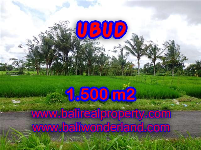 Interesting Land for sale in Ubud Bali, Beautiful Mountain and Paddy view in Ubud Tampak siring– TJUB369