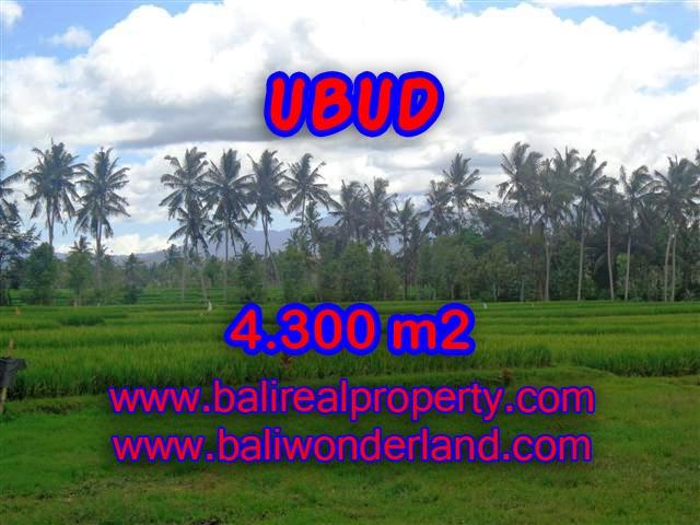 Land for sale in Ubud Bali, Wonderful view in Ubud Center – TJUB370
