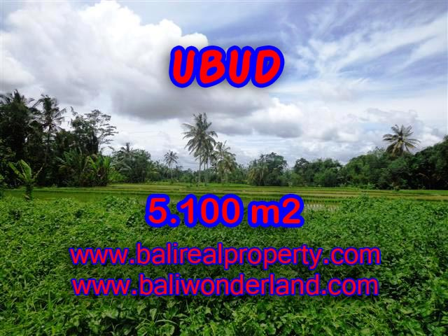 Land in Ubud for sale, Stunning view in Ubud Tegalalang Bali – TJUB368