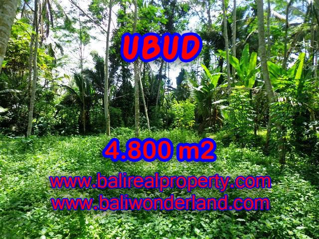 Land in Bali for sale, extraordinary view in Ubud Tegalalang – TJUB382