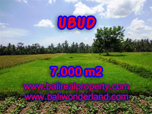 Land for sale in Bali, exotic view in Ubud Center Bali – TJUB381