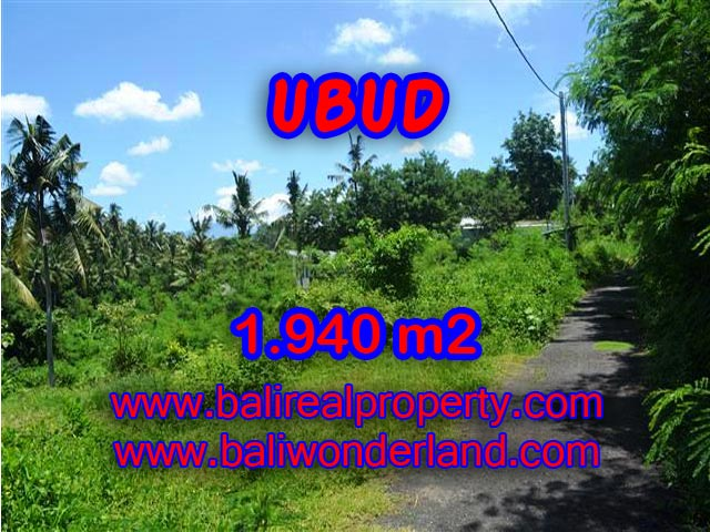 Magnificent Land for sale in Bali, rice field, mountain and river view in Ubud Center Bali – TJUB379