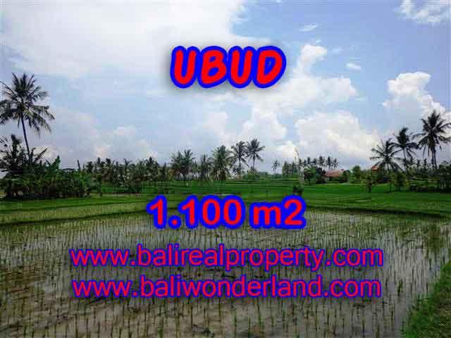 Land for sale in Bali, astonishing view in Ubud Center Bali – TJUB376
