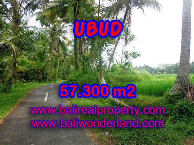 Land in Bali for sale, astounding view in Ubud Bali – TJUB377