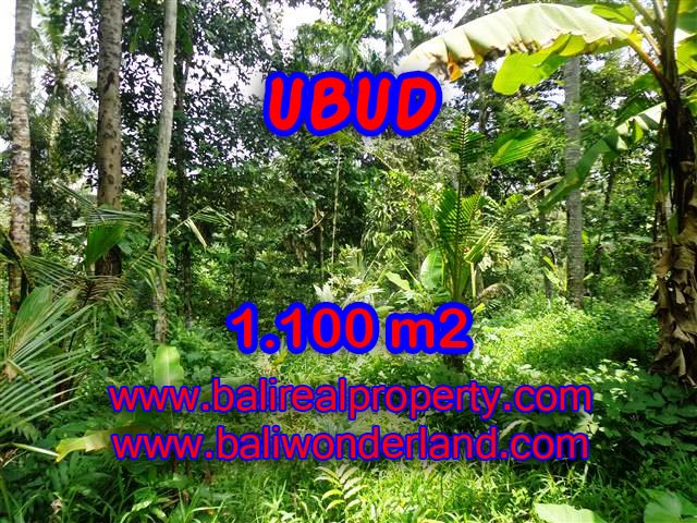 Land in Bali for sale, attractive view in Ubud Tampak siring Bali – TJUB378